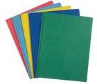 Pocket Folder - Roaring Spring w/Prongs